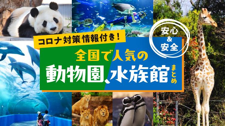 癒やしと発見がいっぱいの動物園&水族館特集!