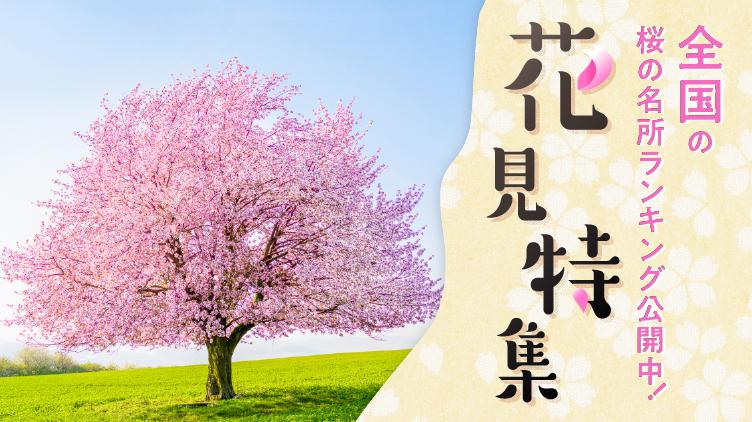 この春みんなが見たい桜の名所ランキング!
