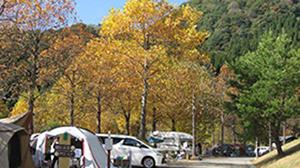 関西エリアで紅葉キャンプ!