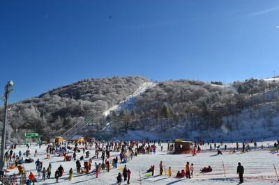 場 2020 スキー オープン