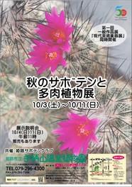 兵庫県のイベント一覧・花・自然(2ページ目)