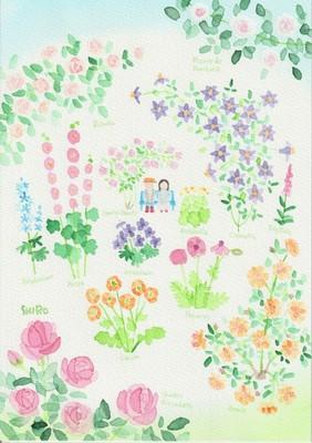 藤川志朗 バラと花のイラスト展 2019春千葉県の情報ウォーカープラス