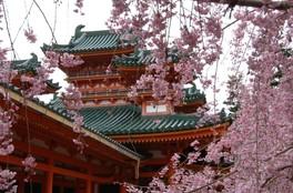 京都 今日 の イベント