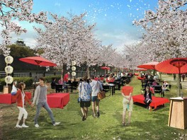 大阪城 お花見 和ーべきゅう