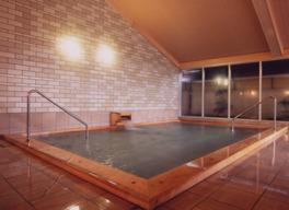 ホテル自慢の屋内風呂は源泉掛け流し
