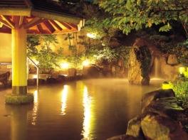広々とした露天風呂には園内で湧いた天然温泉を使用