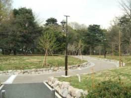 園内にはさまざまな樹木が植えられている