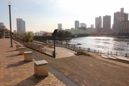 江東区立越中島公園