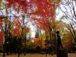 府中の森公園