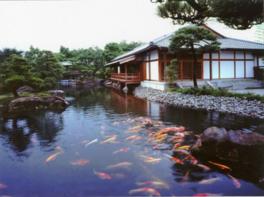 瀬戸内海をイメージした大池には錦鯉が彩りを添えている