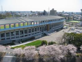 春には周囲に咲く桜が来場者の目を楽しませる