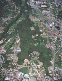 上空から見た箕輪城跡の全景