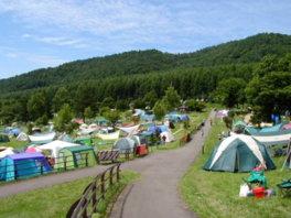 湖畔の自然が魅力の広大なキャンプ場だ