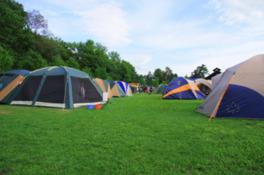 広大な森林公園内にあるキャンプ場