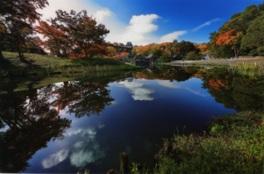 池の周りに樹木や岩石、池を巧みに配した庭園