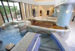 天然温泉は痩身の湯や美人の湯と呼ばれるナトリウム-塩化物泉を使用