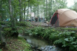 大自然に囲まれたキャンプサイト