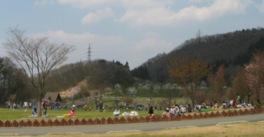 敷物を広げてピクニックを楽しむ人たちも多い
