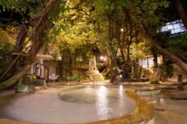 一番人気のジャングル風呂