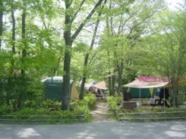 県立清和県民の森キャンプ場