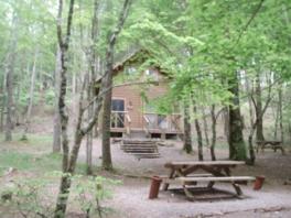 静岡県県民の森キャンプ場