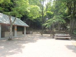 木々に囲まれたキャンプ場。炊事場とトイレも完備