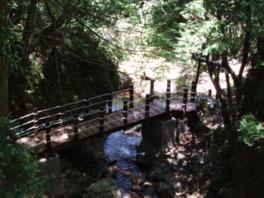 県立日ヶ奥渓谷の森キャンプ場