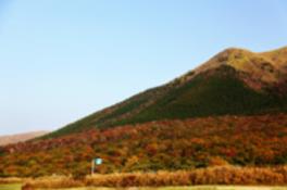 【紅葉・見ごろ】瀬の本高原