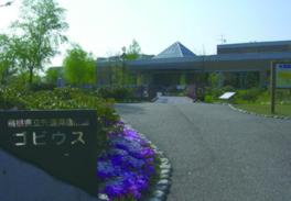 島根県の河川や宍道湖などに暮らす生き物を展示