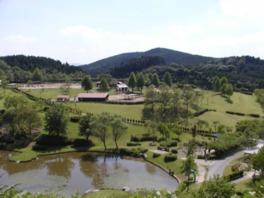 三瀬ルベール牧場 どんぐり村