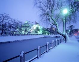鶴岡冬まつり ライトアップ