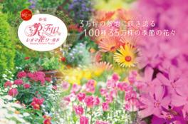 レオマ花ワールド  オープニング春フェスタ