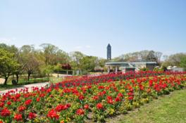 名古屋市東山動植物園