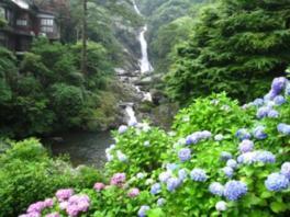 第28回 日本の滝百選 見帰りの滝 あじさいまつり
