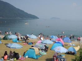 大自然が望める広々とした浜辺は多くの人で賑わう