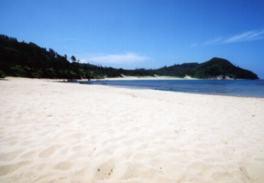 白い砂浜と雄大な緑に癒されるビーチ