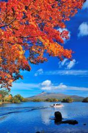 西大島から望む大沼湖、紅葉と湖の絶景が広がる