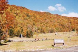色鮮やかに色づく山並みは絶景