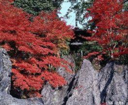 画像提供:石山観光協会