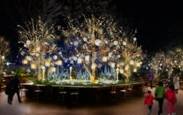 2016 OMOHARA illumination