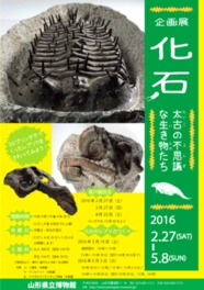 化石―太古の不思議な生き物たち―