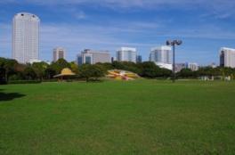 開放的な空間の大芝生広場
