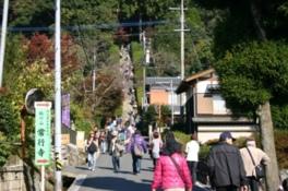 JR九州ウォーキング おもてなしの町基山とつつじ寺「大興善寺」を訪ねて