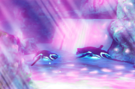 プロジェクションマッピング「ペンギンピクニック」