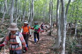 温海嶽開山祭 新緑のブナの森登山会