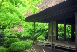 国の名勝「九年庵春の一般公開」