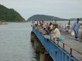 桟橋では魚釣りを楽しむ人も見られる