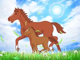 馬と仲良しになろう! ~小学生の自然体験プログラム~