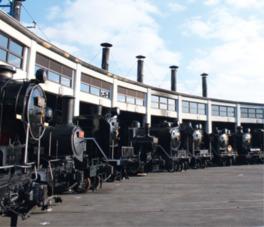 蒸気機関車がずらりと並ぶ扇形車庫