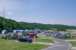 キャンプも楽しめる広々とした公園